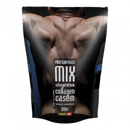 Protein Power Mix 1000гр