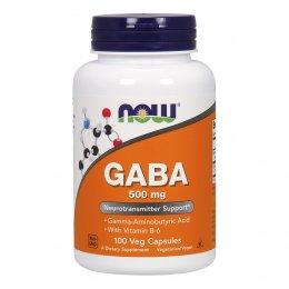 GABA 500 mg 100 капс