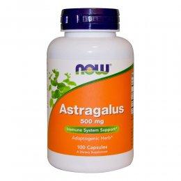Astragalus 500 mg 100 капс